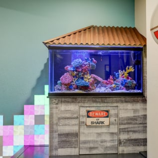 Fish tank at Smile Surfers Richland